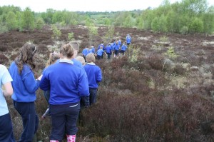 Day Trip to the Bog With Mullagh NS, 5th Class