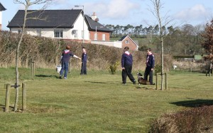 A joint project with Mullagh Tidy Towns & the Scouts
